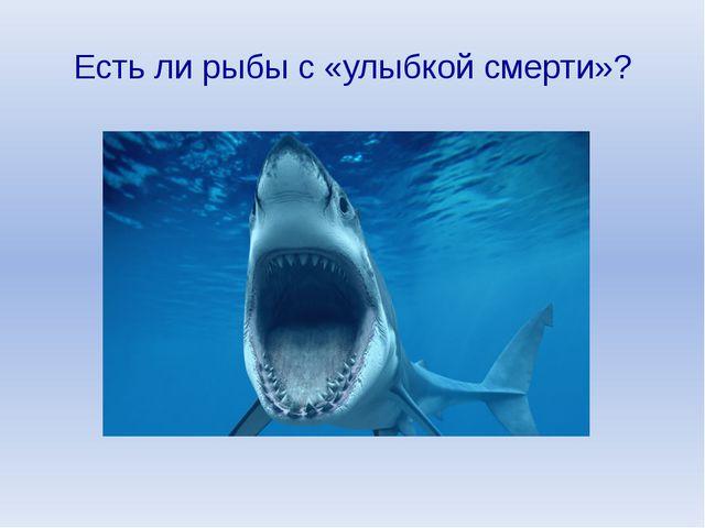 Есть ли рыбы с «улыбкой смерти»?