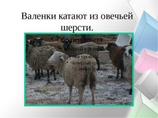Валенки катают из овечьей шерсти.