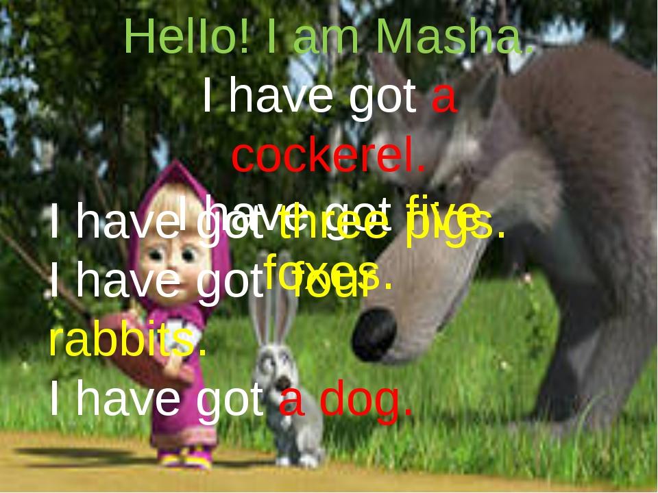 HelIo! I am Masha. I have got a cockerel. I have got five foxes. I have got...
