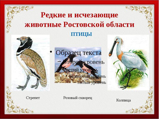 оптом вымершие птицы красной книги Израиле