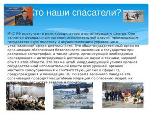 Кто наши спасатели? МЧС РФ выступает в роли координатора и организующего цент