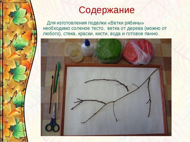 Содержание Для изготовления поделки «Ветки рябины» необходимо соленое тесто,...
