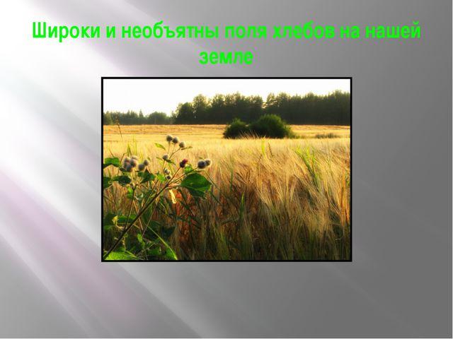 Широки и необъятны поля хлебов на нашей земле