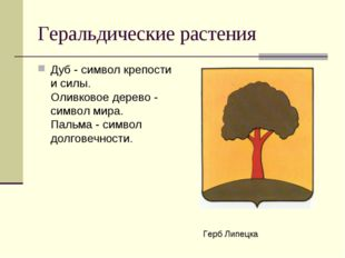 Геральдические растения Дуб - символ крепости и силы. Оливковое дерево - сим