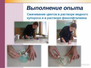 Выполнение опыта Смачивание цветов в растворе медного купороса и в растворе ф