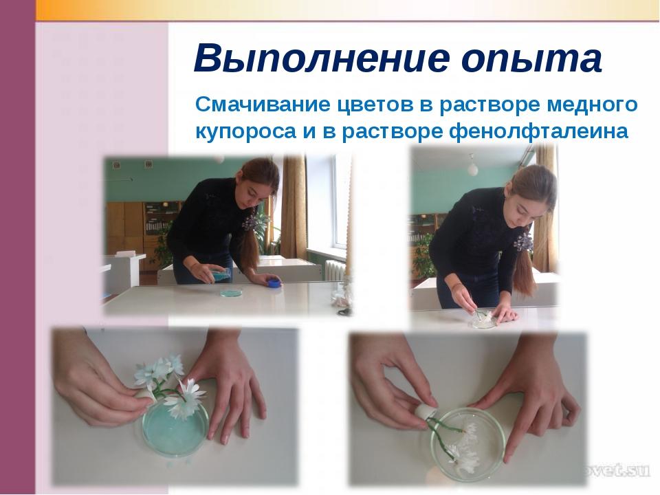 Выполнение опыта Смачивание цветов в растворе медного купороса и в растворе ф...