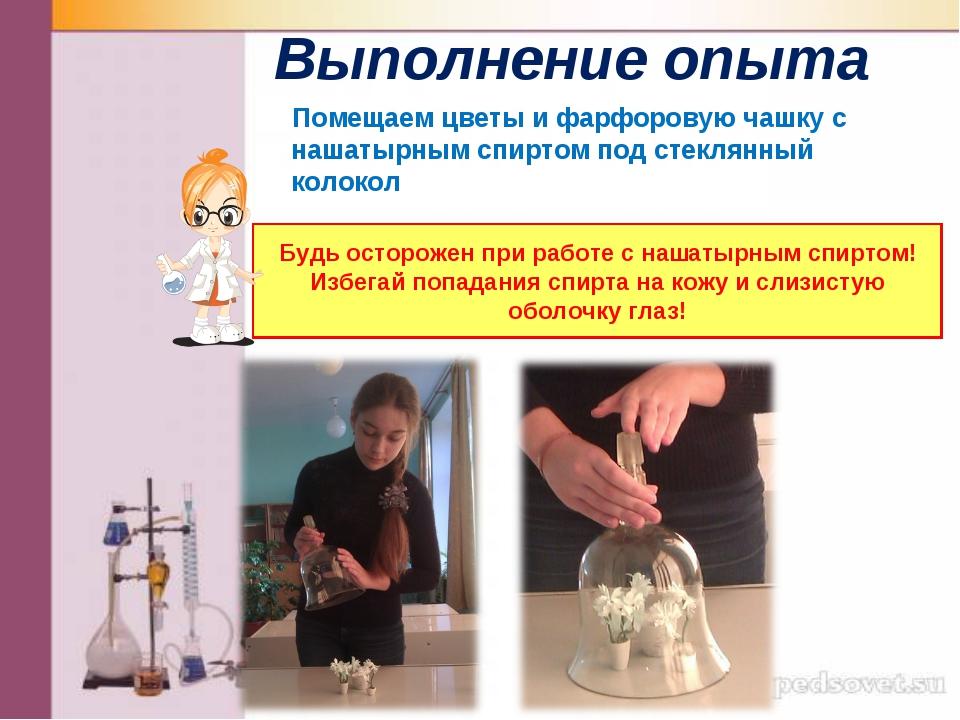 Выполнение опыта Помещаем цветы и фарфоровую чашку с нашатырным спиртом под с...