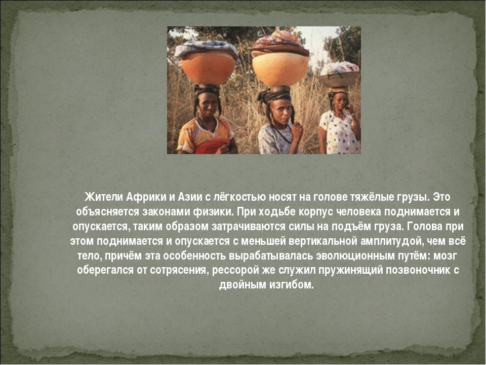 Жители Африки и Азии с лёгкостью носят на голове тяжёлые грузы. Это объясняет...