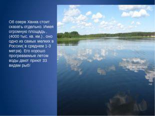 Об озере Ханка стоит сказать отдельно. Имея огромную площадь ,(4000 тыс. кв.