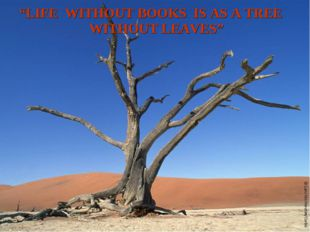 """""""LIFE WITHOUT BOOKS IS AS A TREE WITHOUT LEAVES"""""""