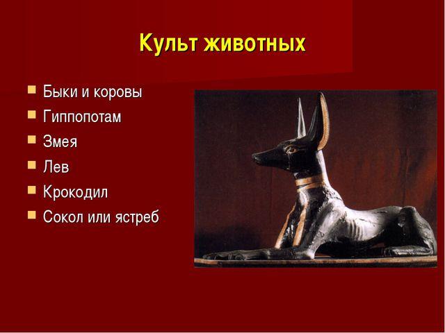 Культ животных Быки и коровы Гиппопотам Змея Лев Крокодил Сокол или ястреб