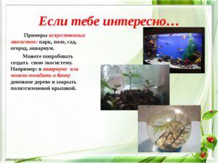 Если тебе интересно… Примеры искусственных экосистем: парк, поле, сад, огород