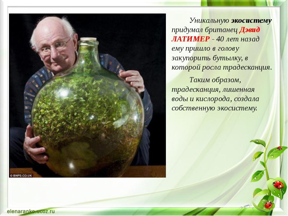 Уникальную экосистему придумал британец Дэвид ЛАТИМЕР - 40 лет назад ему при...