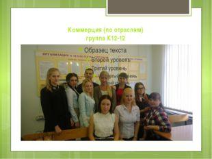 Коммерция (по отраслям) группа К12-12