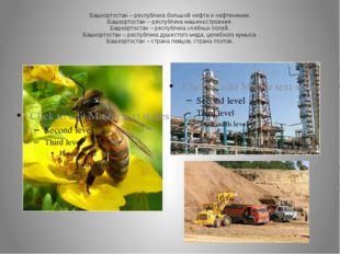 Башкортостан – республика большой нефти и нефтехимии. Башкортостан – республи