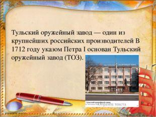 Тульский оружейный завод — один из крупнейших российских производителей В 17