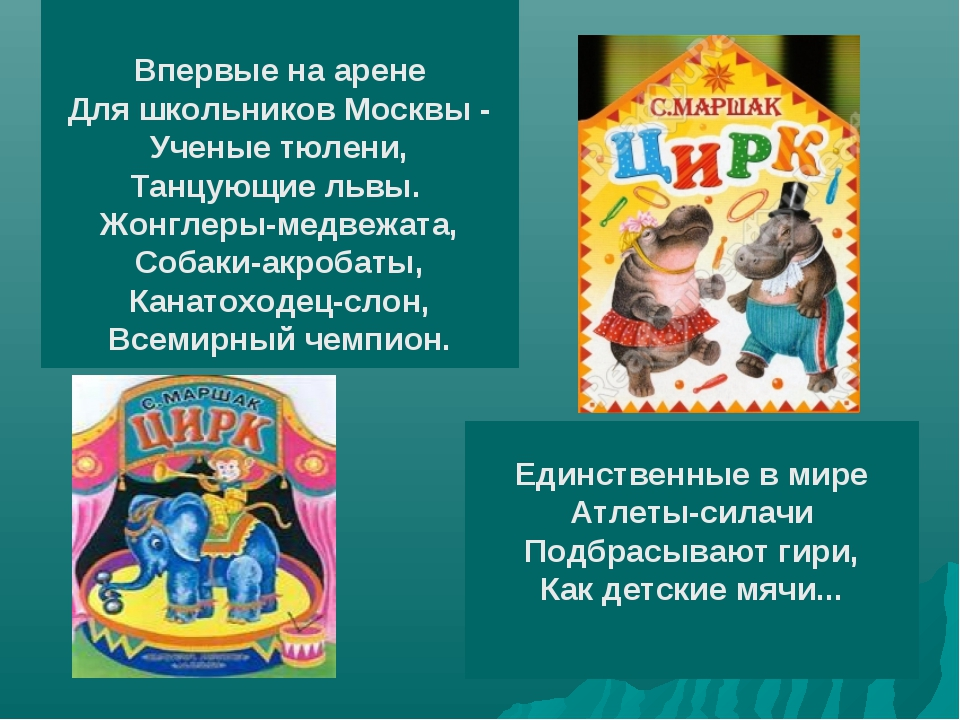 Впервые на арене Для школьников Москвы - Ученые тюлени, Танцующие львы. Жонг...