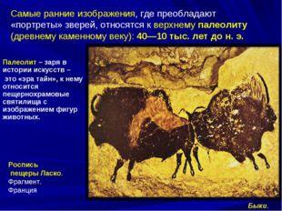 Самые ранние изображения, где преобладают «портреты» зверей, относятся к верх