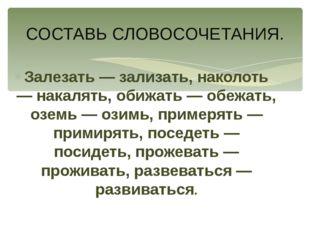 Залезать — зализать, наколоть — накалять, обижать — обежать, оземь — озимь, п