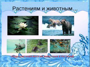Растениям и животным… СРЕДА ОБИТАНИЯ МНОГИХ ЖИВОТНЫХ И РАСТЕНИЙ