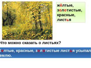 Что можно сказать о листьях? Желтые, красные, золотистые листья усыпали землю