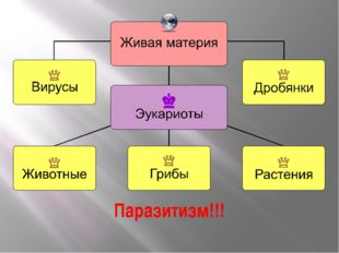 Паразитизм!!! Схема деления живой материи на царства и указание на паразитизм.