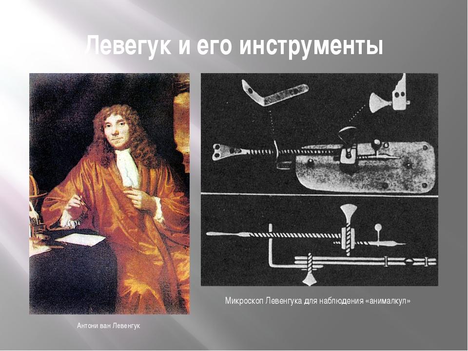 Левегук и его инструменты Антони ван Левенгук Микроскоп Левенгука для наблюде...