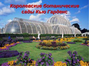 Королевские ботанические сады Кью Гарденс