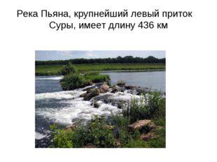 Река Пьяна, крупнейший левый приток Суры, имеет длину 436 км