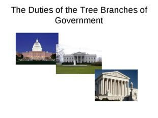 The Duties of the Tree Branches of Government