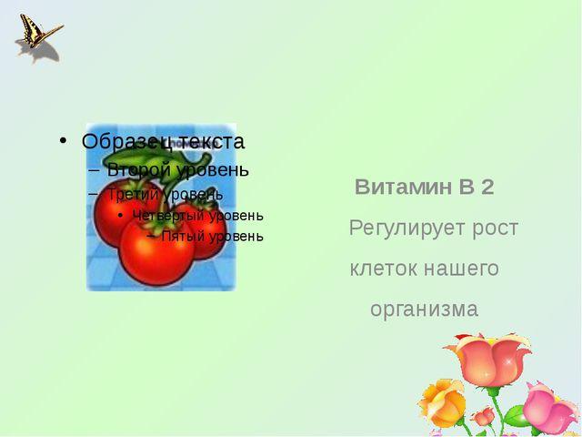 Витамин В 2 Регулирует рост клеток нашего организма