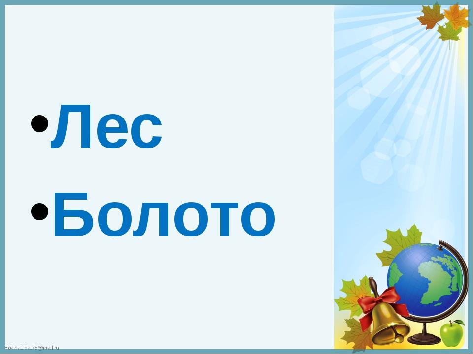 Лес Болото FokinaLida.75@mail.ru