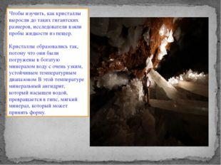 Чтобы изучить, как кристаллы выросли до таких гигантских размеров, исследоват