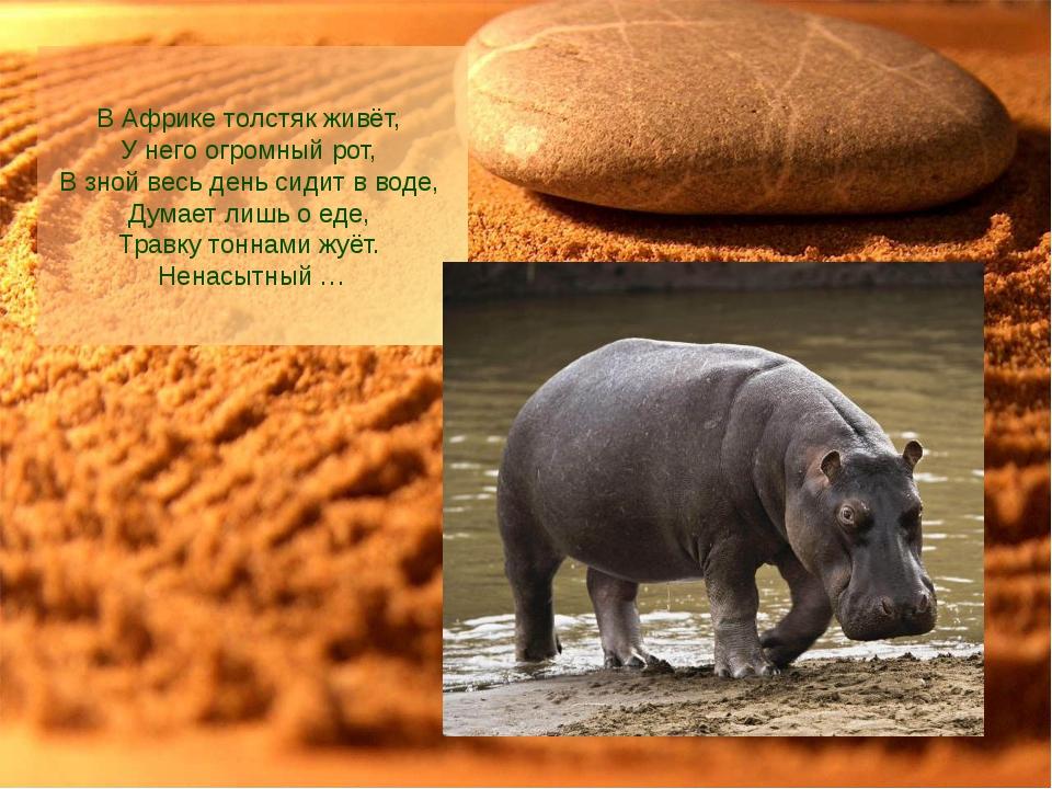 В Африке толстяк живёт, У него огромный рот, В зной весь день сидит в воде,...