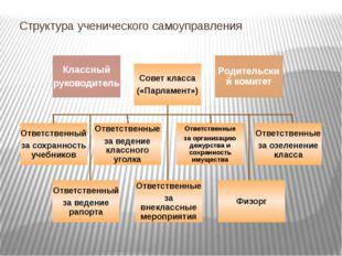 Структура ученического самоуправления Классный руководитель Совет класса («Па