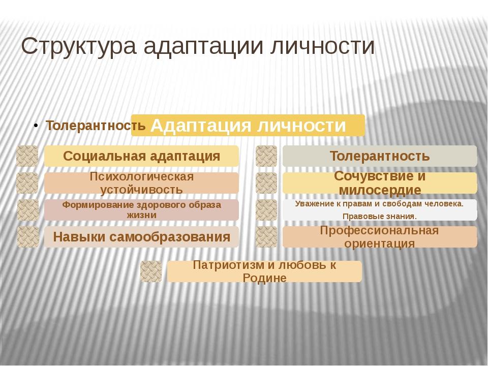 Структура адаптации личности Структура адаптации личности.