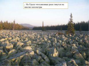 . На Урале эти каменные реки тянутся на многие километры
