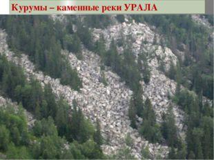 Курумы – каменные реки УРАЛА