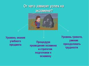 Уровень знания учебного предмета Процедура проведения экзамена и стратегия по