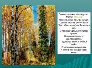 Осенние листья по ветру кружат... АполлонМайков Осенние листья по ветру круж