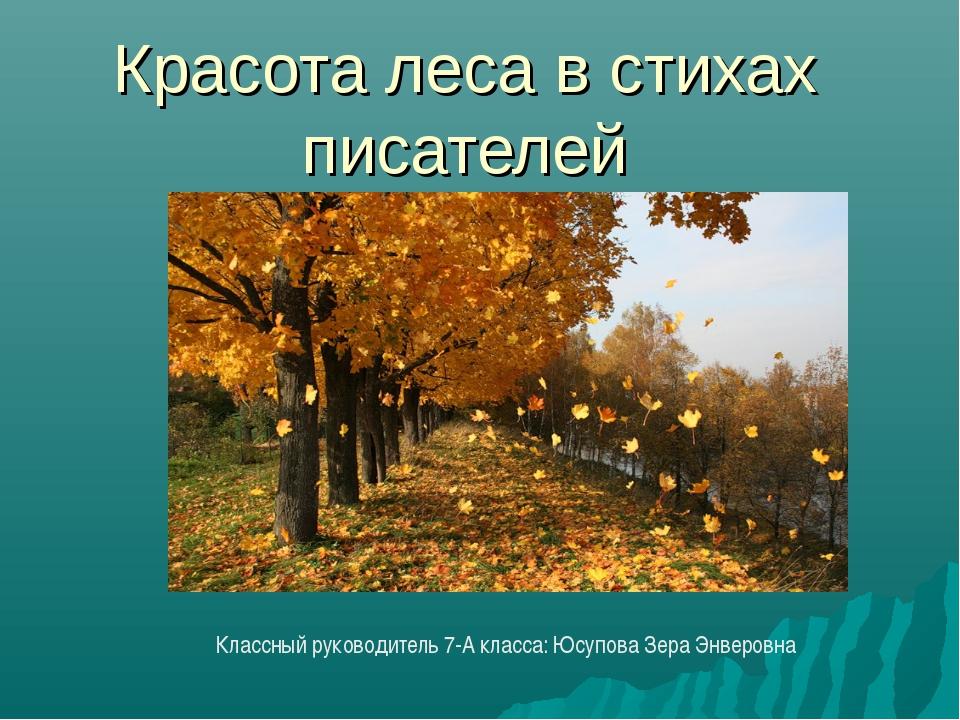 Красота леса в стихах писателей Классный руководитель 7-А класса: Юсупова Зер...