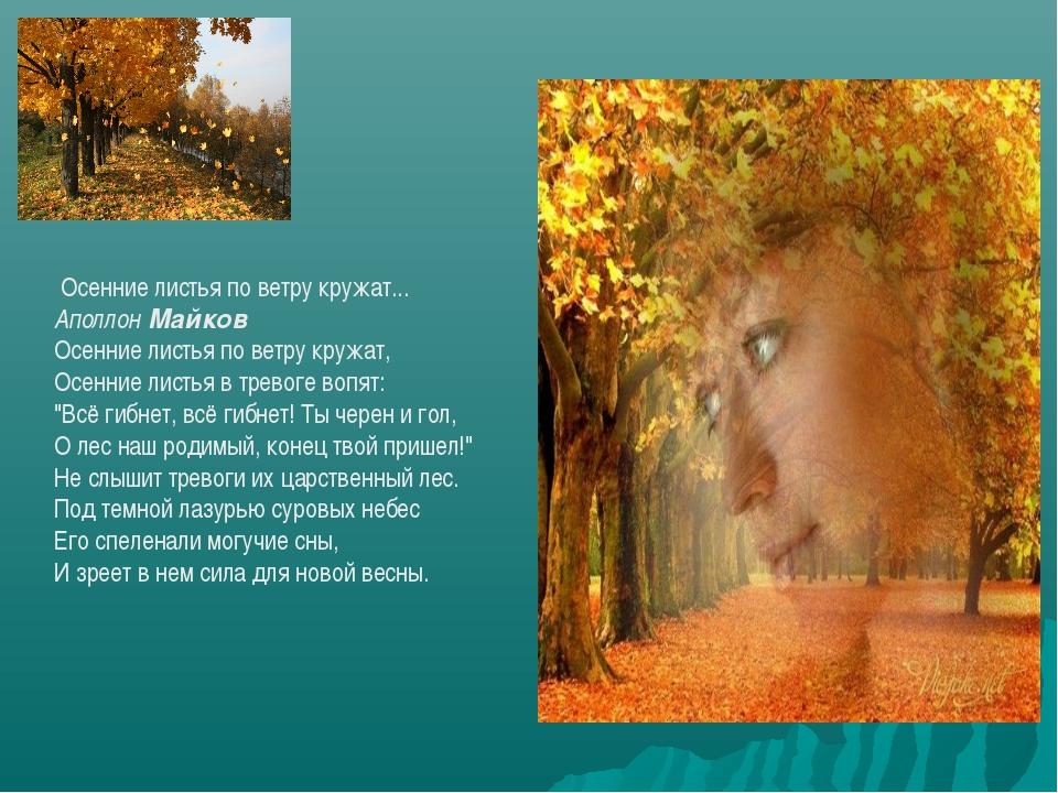 Осенние листья по ветру кружат... АполлонМайков Осенние листья по ветру кру...