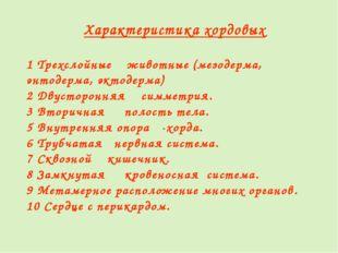 Характеристика хордовых 1 Трехслойные животные (мезодерма, энтодерма, эктодер
