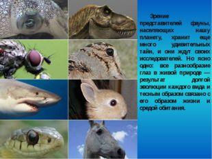 Зрение представителей фауны, населяющих нашу планету, хранит еще много удивит
