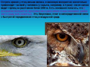 Острота зрения у птиц весьма велика, и минимум восприятия значительно превосх
