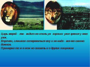 Царь зверей - лев - видит не столь уж хорошо: угол зрения у него узок. Впроче