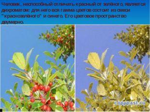 Человек, неспособный отличать красный от зелёного, является дихроматом: для н