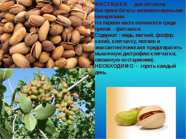 ФИСТАШКИ - для сетчатки. Все орехи богаты жизненно важными минералами. На пер...