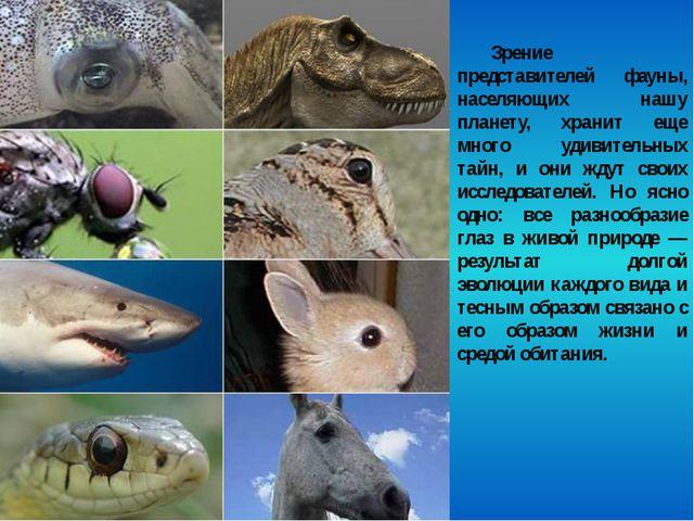 Зрение представителей фауны, населяющих нашу планету, хранит еще много удивит...
