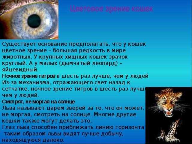 Цветовое зрение кошек Существует основание предполагать, что у кошек цветное...